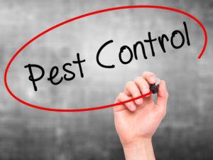 Pest Control - Exterminators